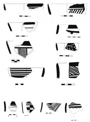 Figure 7. Pottery samples from Saki Abad.