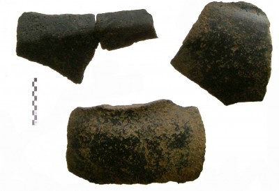 Figure 3. Sherds with black burnished surface.