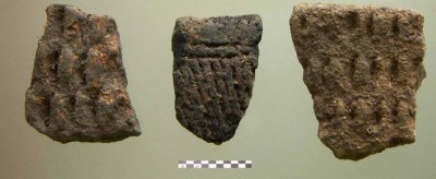 Figure 4. Sherds with impressed decoration.