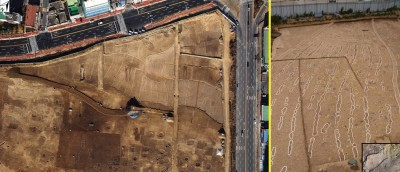 Figure 4. Three Kingdom-period rice paddy fields at Pyeonggeo-dong locality 3-1; aerial view and a patch showing human (outlined in blue) and cattle (in yellow) footprints alongside plough marks (in white); a close-up view of the footprints is provided via the inset.
