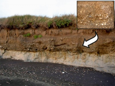 Figure 2. Outcrop of a fossil pebble beach in Nettuno (Rome).