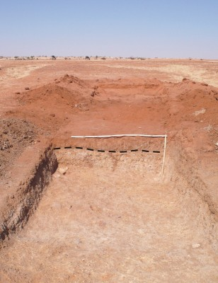 Figure 3. View of one of the excavated trenches; the dashed line on the vertical section marks the erosive transition between the upper sterile layers and the top of the palaeosols developed on fluvial sediments.