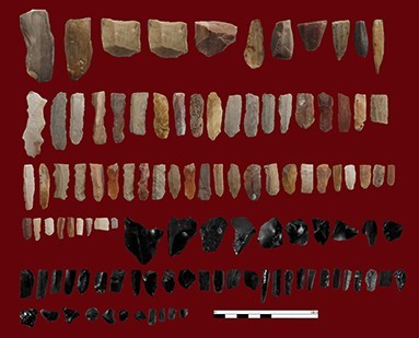 Figure 5. Chipped-stone artefacts of Bar-e Palang.